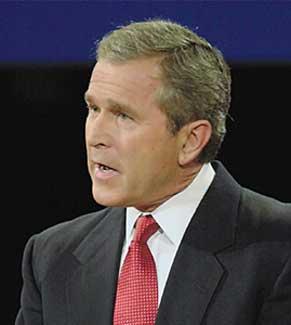 bush2.jpg